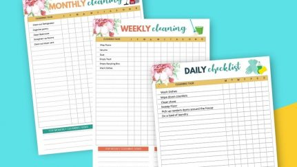 Daily Cleaning Checklists pin